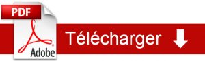 bouton-telechargement-pdf